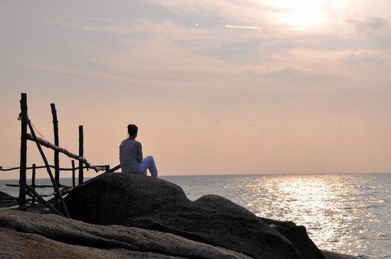 Blooming Lotus Yoga: Sunrise on the rocks
