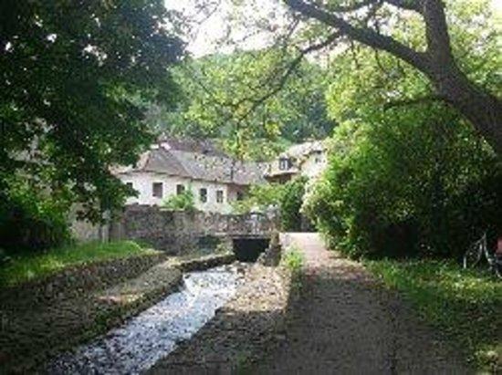 Donauradweg: Picturesque picnic spot
