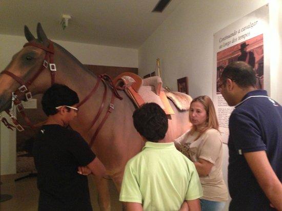 Hotel Lusitano: equestrian centre