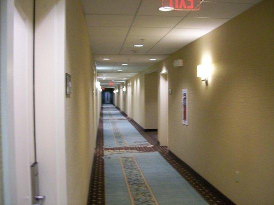 Hampton Inn & Suites Mahwah: Interior Corridors To Rooms