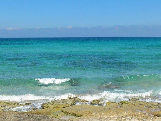 Hotel & Spa Ferrer Concord: Море море