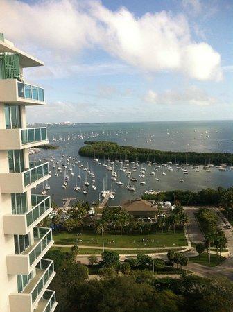 Sonesta Coconut Grove Miami : love my view
