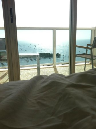 Sonesta Coconut Grove Miami: Good Morning  world