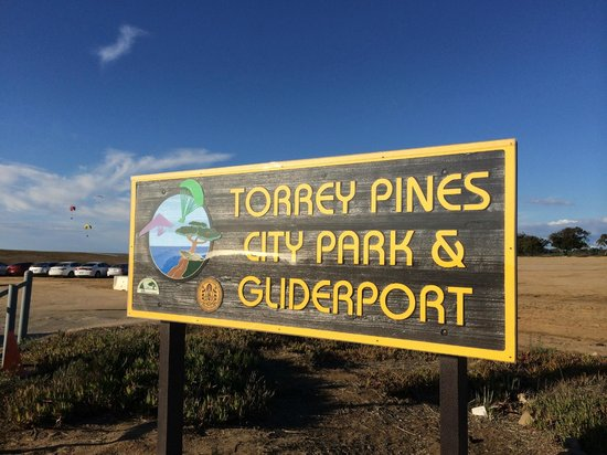Torrey Pines Gliderport: Sing when you pull in