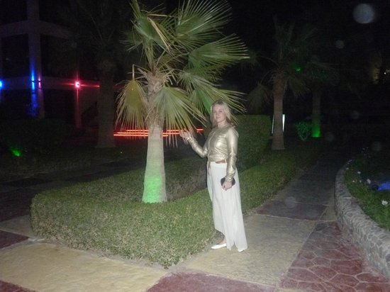 Hurghada SeaGull Beach Resort: территория отеля