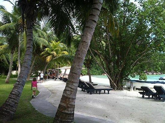 Paradise Sun: En bord de plage