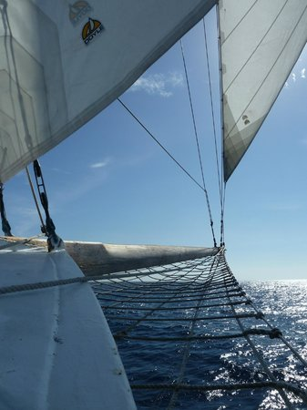 Sailing Ship Insulinde - Day Tours: Insulinde