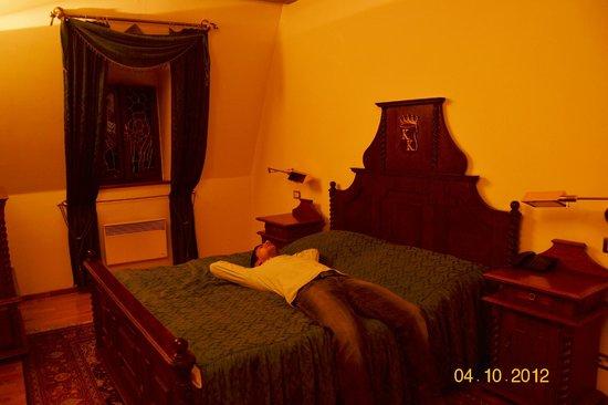 Hotel U Krale Karla (King Charles): camera