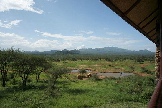 Kilaguni Serena Safari Lodge: Room with a view!