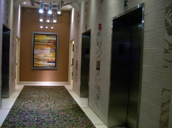 Embassy Suites by Hilton Raleigh - Durham Airport/Brier Creek: Elevator Bank in Lobby Area