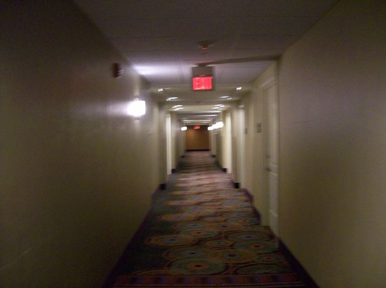 Embassy Suites by Hilton Raleigh - Durham Airport/Brier Creek: Interior Corridor to Rooms