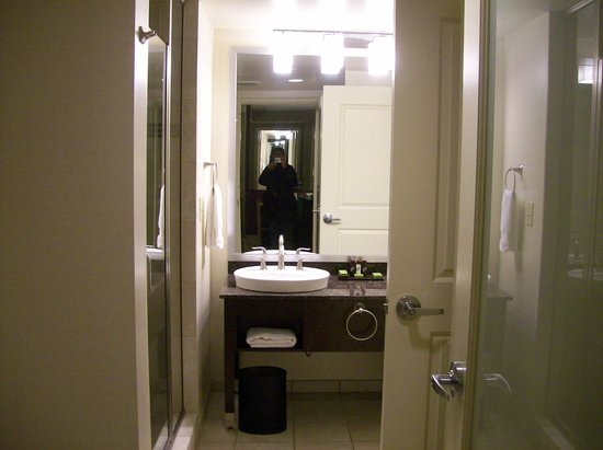 Embassy Suites by Hilton Raleigh - Durham Airport/Brier Creek: Bathroom in your Suite, no tub, room 306