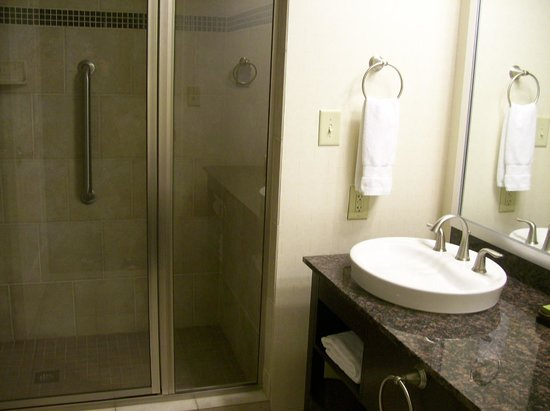 Embassy Suites by Hilton Raleigh - Durham Airport/Brier Creek: Bathroom Shower Stall and Sink in Room