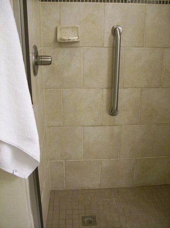 Embassy Suites by Hilton Raleigh - Durham Airport/Brier Creek: Shower Stall in Room/Suite