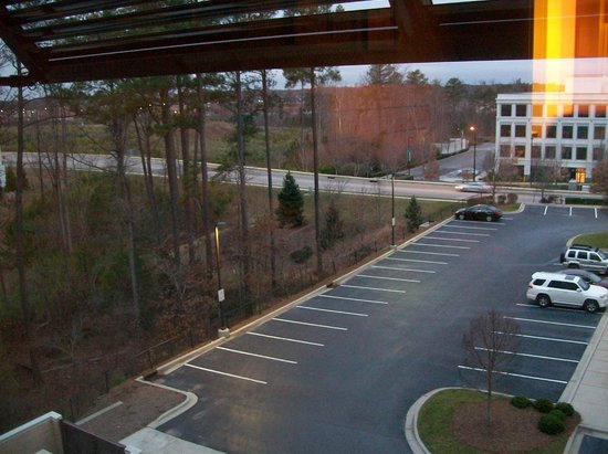 Embassy Suites by Hilton Raleigh - Durham Airport/Brier Creek: View from room 306