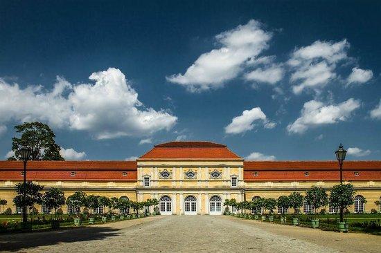 Grosse Orangerie Schloss Charlottenburg: Orangerie
