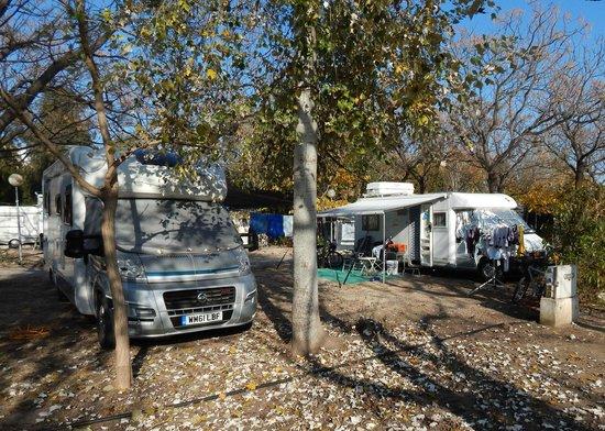 Camping Los Llanos : Motorhome pitches at Camping Los Lanos