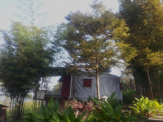 The Postcard Resort: Outside view of yurt