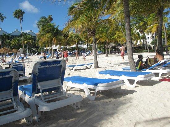 Renaissance Aruba Resort & Casino: Beach at Renaissance Ocean Suites