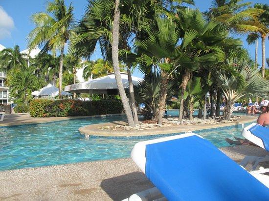 Renaissance Aruba Resort & Casino: Swim up bar at Renaissance Ocean Suites