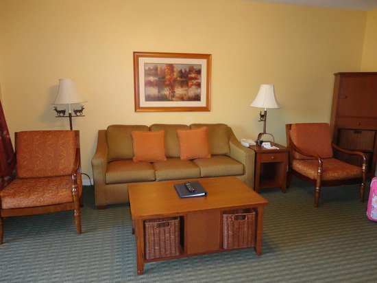 Wyndham Smoky Mountains: Living Room