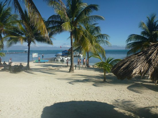Exotic Caye Beach Resort: Standing on hotel grounds, looking at beach