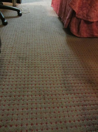 Econo Lodge International: Dirty carpet