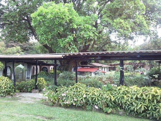 Hotel Rincon Vallero: Hotel & grounds