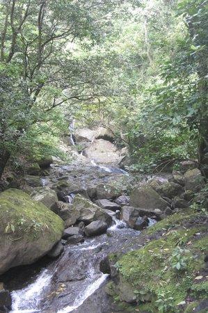 The Sleeping Indian Girl: Waterfalls along the way