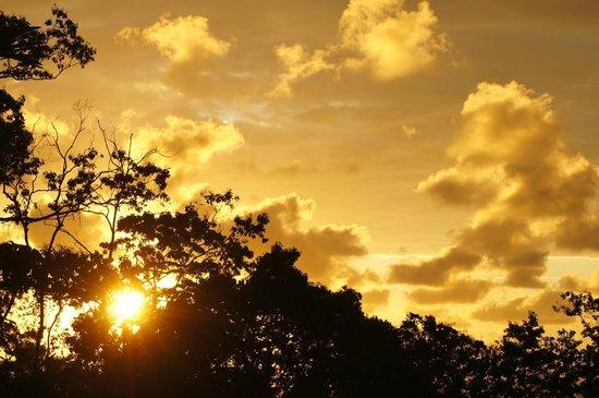Casa Corcovado Jungle Lodge : Margarita Sunset Pont あいにくの曇天