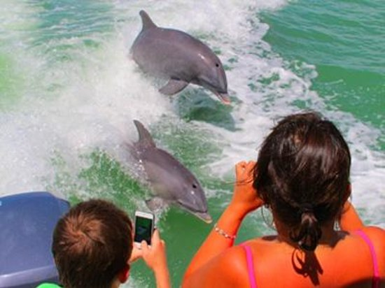 Marco Island, FL: Welcome to Florida Backcountry Adventures