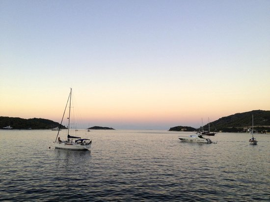 WearActive: Harbor at sunset