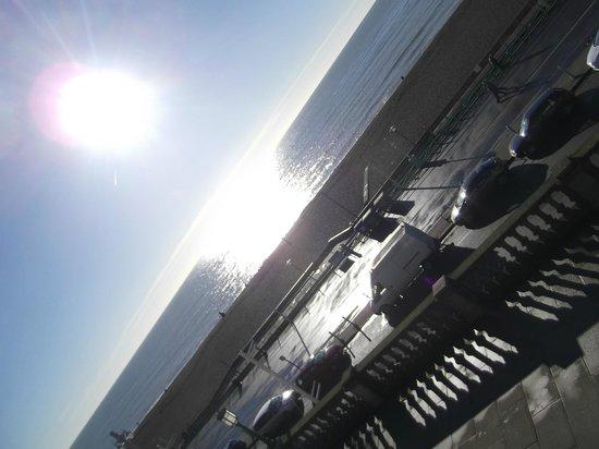New Steine Hotel: Beach in January!
