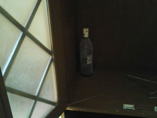 Narayan Niwas Palace: Empty bottles in the room