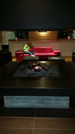 Le Chalet du Mont Vallon Spa Resort: Fire place in lobby