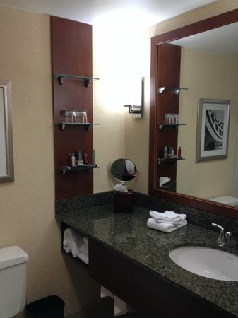 Tampa Marriott Westshore: Bathroom sink