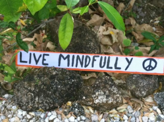 Panacea de la Montana Yoga Retreat & Spa: There are signs like this all round the resort--we made our own and left our mark!