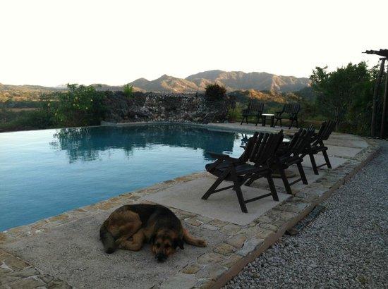 Panacea de la Montana Yoga Retreat & Spa: The main pool area