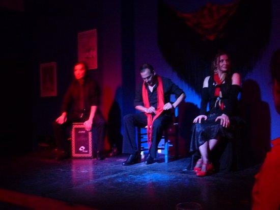 Kelipe Centro de Arte Flamenco: The guitarist