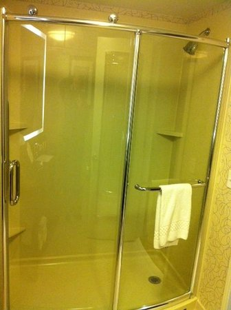 Residence Inn Boston Logan Airport/Chelsea : Heavy Shower Door no wasted tub
