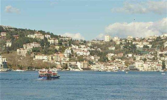 Sehir Hatlari Cruise : Bosphorus Cruise