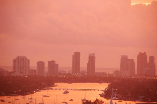 Miami Marriott Biscayne Bay: The View