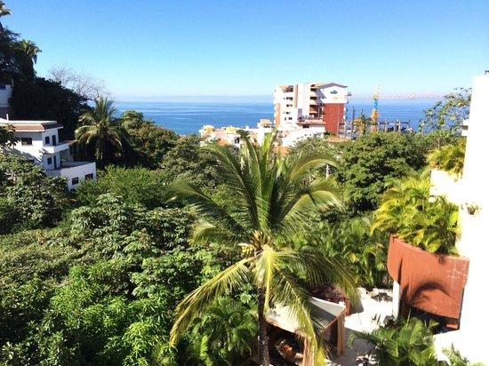 Casa Cupula: Ocean view.