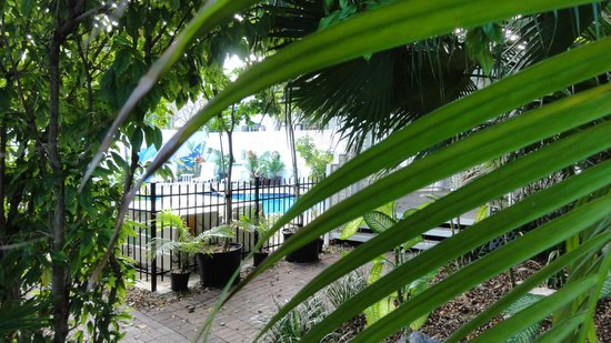 The Duval House: poolsite