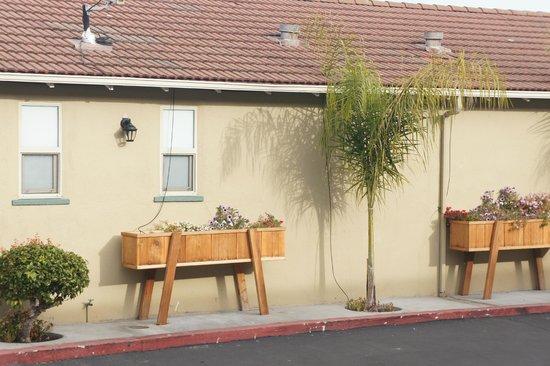 El Castell Motel: Sustainable watering