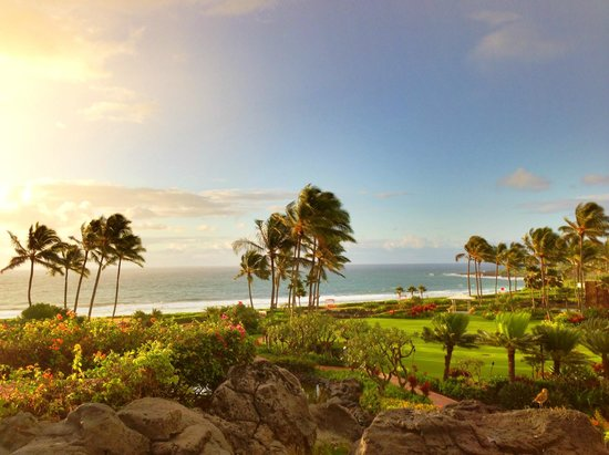 Grand Hyatt Kauai Resort & Spa : Great views from the grounds