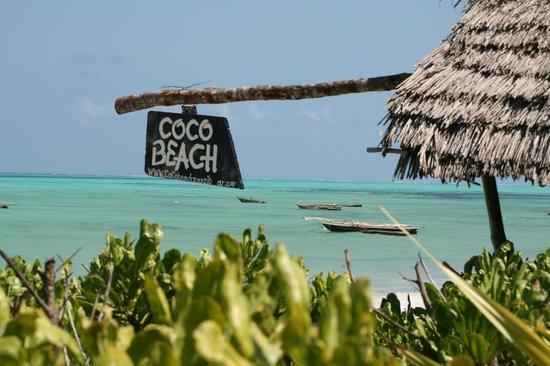 Coco Beach Hotel: Vue du jardin