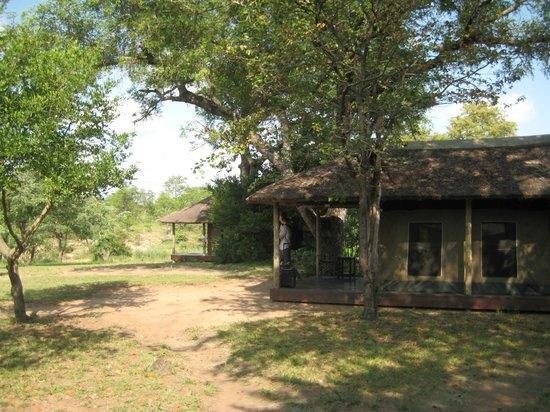 Shindzela Tented Camp: Hyttene