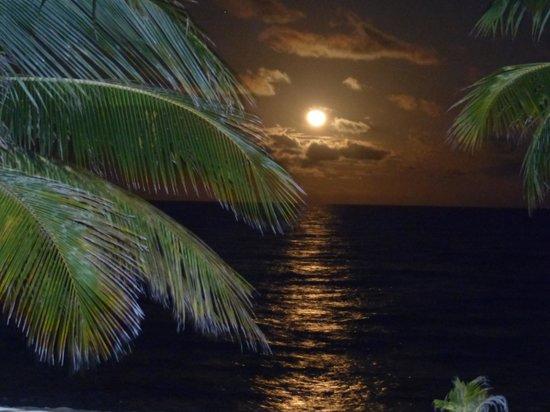Los Porticos Villas : Moonrise over the Pool