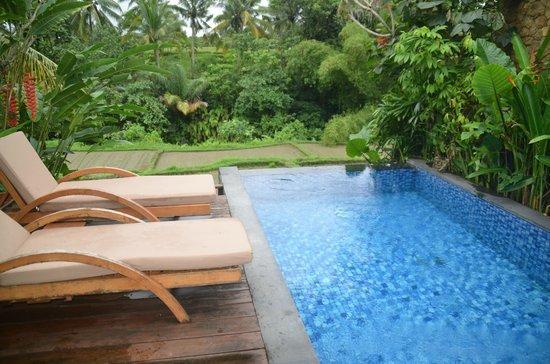 Ubud Green: Private pool